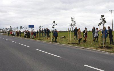 120 drzew na 120-lecie Banku Spółdzielczego w Ciechanowie